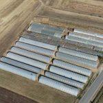 Оглас за давање у закуп и на коришћење пољопривредног земљишта у државној својини у општини Власотинце